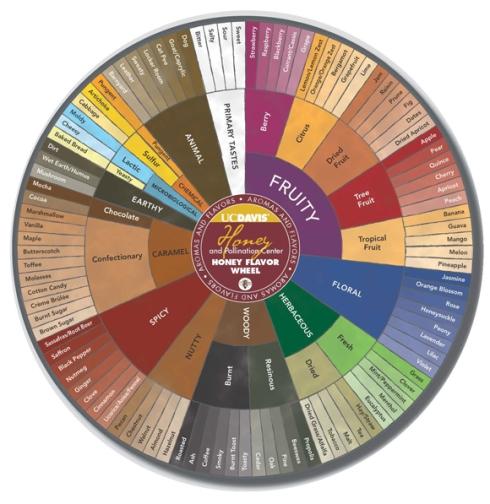 Honey tasting wheel from UC Davis