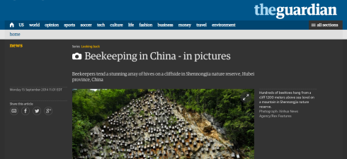 This screenshot shows the top of the photo gallery in The Guardian of a beekeeper in China whose hives are on a cliff.